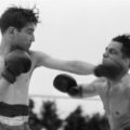 Rolling With The Punches Featured Image: Two Boxers punching
